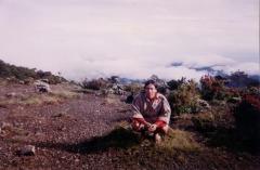 SURKEN 2001