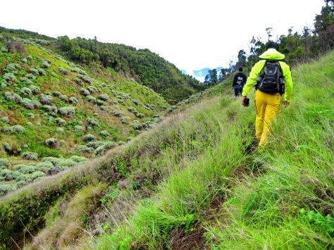 track setelah melewati mata air