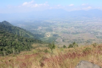 pemandangan puncak1