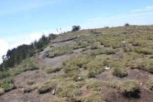 Landscape Bhutak